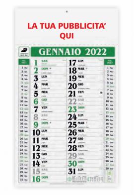 Calendario olandese Gigante Verde 2020 - 31x53.5