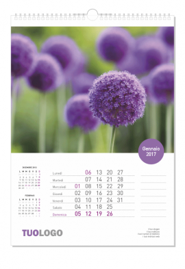 Calendari da muro 2020 verticale - 14.8x21 - modello 1